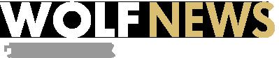 ウルフニュース|中古ドメインやアフィリエイトに関する情報を発信